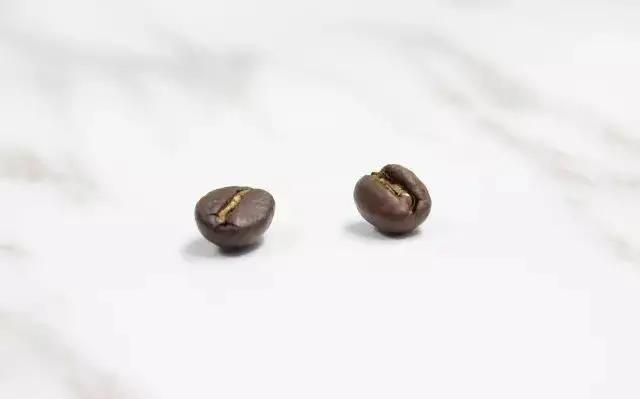 咖啡豆的选择